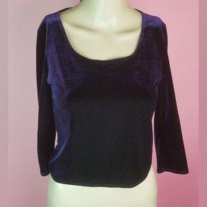 Max Studio Purple Velvet Crop Top